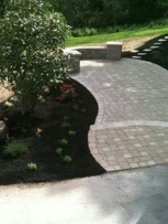 Paver patio and new landscape