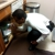 EMC PEST CONTROL AND CLEANING SERVICES