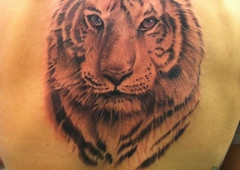Aces High Tattoo 704 Seaboard St, Myrtle Beach, SC 29577 - YP.com