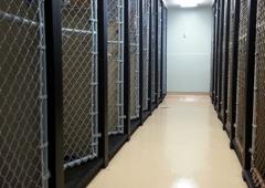 Chattahoochee Animal Clinic - Roswell, GA
