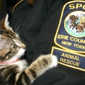 SPCA Serving Erie County - Tonawanda, NY