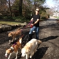 Good Shepherd Pet Sitters - Asheville, NC