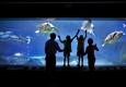 Adventure Aquarium - Camden, NJ