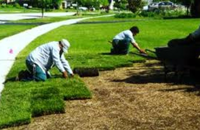 Doug Scott Lawn Maintenance - Palm Bay, FL