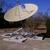 Satellite Systems & Service, Inc.
