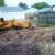 Beaver's Stump Grinding Svc