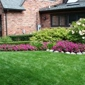 Green Planet Landscaping & Painting - San Jose, CA