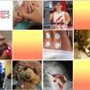 Wellness Quest Chiropractic