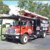 Pinellas Tree Service