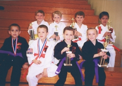 Danville Karate International - Danville, CA