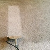 Green Carpet Cleaning in Inglewood