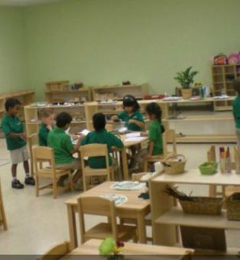 Montessori Ivy League - Pembroke Pines, FL