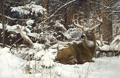 Bob Travers Art - Fletcher, NC