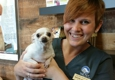 The Pet Hospitals-Lakeland - Lakeland, TN