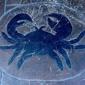 Billy's Stone Crab Hollywood - Hollywood, FL