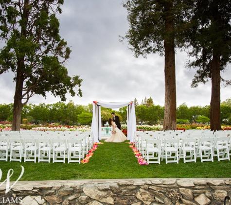 Williams Party Rentals - San Jose, CA