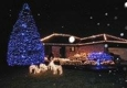 zoros Christmas lights - Wixom, MI