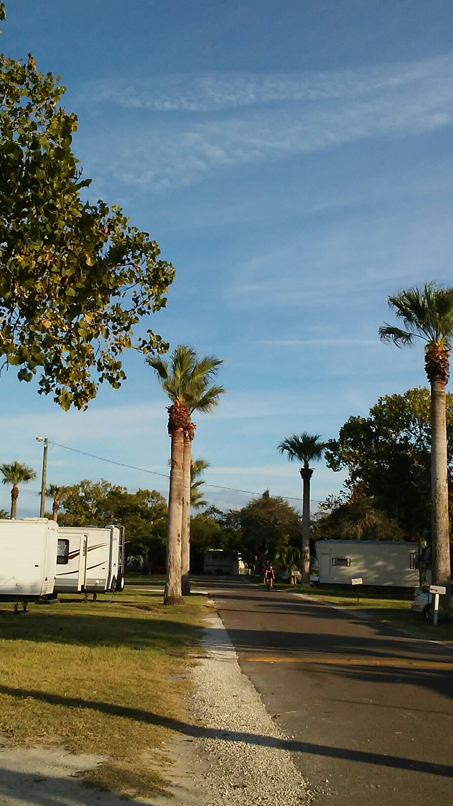 Shady Grove Mobile Home RV Park Corpus Christi TX 78418