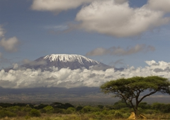 Kilimanjaro Centre for Trekking & Eco-tourism - Washington, DC. Mount Kilimanjaro