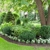 Green Savers Landscaping, LLC.
