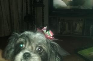 Oreo her day of beauty treatment