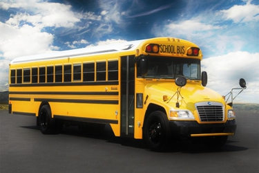 Yellow Tail Bus Charters