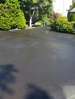 And after we started spraying .makes it look like you just received a new drive way.