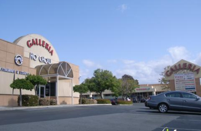 Candy's Dog Salon - Fremont, CA