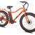 Big Cat Bike's