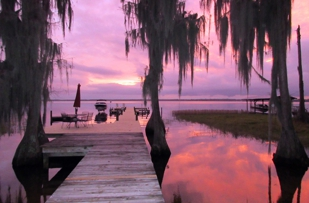 Lake Area Travel Agency, Melrose, FL Airline, Cruise, Tour, Adventure Travel