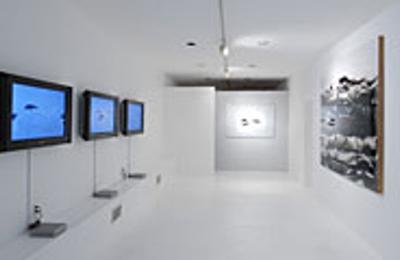 Conner Contemporary Art - Washington, DC