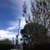 Cottonwood Tree Service
