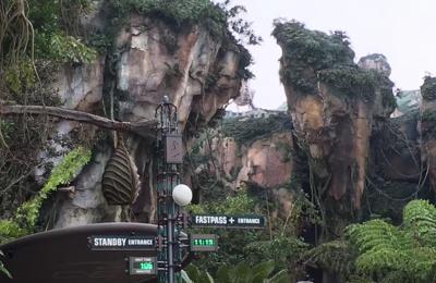 Disney's Animal Kingdom Theme Park - Orlando, FL