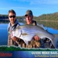 Bailey's Beaver Lake Striper Guide Service - rogers, AR. Beaver Lake Striper Fishing Guide