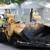 Affordable street asphalt sealing