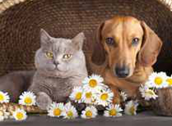 Byhishands Pet Shipping - New Freedom, PA