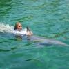Miami Swim with Dolphin Tours