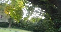 Danville Tree Care - Danville, VA