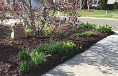 Leisure Landscape - Durham, NC. They did an outstanding job mulching my front and backyard