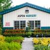 Aspen Nursery
