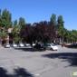 Isynergy Webdesign - Sunnyvale, CA
