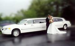 A Showtime Limousine Service Inc