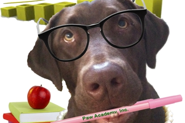 Paw Academy, Inc. |  Pet Sitting Business Solutions