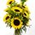 McShan Florist, Inc.