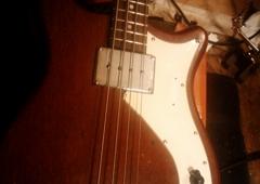 Sick String Guitar Repair - Portland, OR