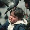Battle Born Pigeon Control