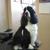 Clipper Ship Pet Grooming & Boarding