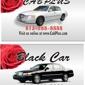 Black Car Taxi - Tampa, FL