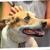 The Honolulu Pet Clinic