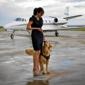 Aberdeen Acres Pet Resort & Spa - Stephenson, VA